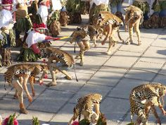 n the guise of a jaguar, a dancer moves to the music of reed whistles and drums during El Pochó, a pre-Lenten ritual in Tenosique, Mexico, that blends the enduring customs of the ancient Maya with Roman Catholic beliefs from the Spanish conquistadores. The performance begins with a malevolent god letting loose a pack of jaguars to kill human beings. Good eventually triumphs over evil when the humans repent their sins and destroy their wicked opponent.