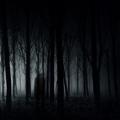 Ghost by Luis Mariano González on Creepy Woods, Spooky Woods, Haunted Woods, Haunted Forest, Luis Mariano, Shadow Tree, Blue Forest, Season Of The Witch, Fantasy Places