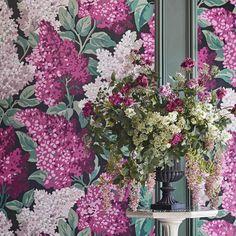 Blush Wallpaper, Home Wallpaper, Magenta Walls, Decor Interior Design, Interior Decorating, Attic Master Bedroom, Syringa Vulgaris, Purple Home Decor, Purple Bedding