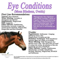 Young Living Essential Oils: Horse