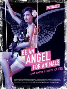Be an Angel for Animals list