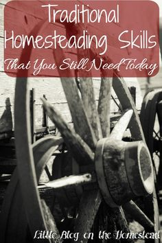 Traditional Homesteading Skills That You Still Need Today
