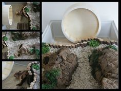natural hamster cage - Google Search …