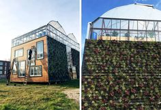 Helly Scholten and her partner Mark de Leeuw are living with their children in an experimental greenhouse dwelling designed by Rotterdam University students. Greenhouse Plans, Greenhouse Gardening, Container Architecture, Architecture Design, Rotterdam, Moss Wall, Back Gardens, Growing Plants, Garden Planning