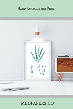 Spine and Vertebrae Abstract Anatomy Art Print – medpapers Hand Bone Anatomy, Anatomy Art, Physical Therapy Student, Physical Therapist, Medical Office Decor, Medical Posters, Medical Gifts, Hand Therapy