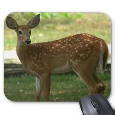 Deer Mousepad. Mouse Pad