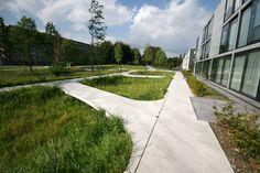 Quirijnpark-tilburg-by-karres-en-brands-landscape-architecture-05 « Landscape Architecture Works   Landezine