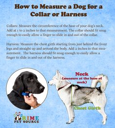 Each pup is different! Make sure you have the perfect fit for your precious pooch! Check out Prime Pet Source's sizing charts before your purchase at primepetsource.com!