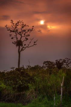 Sunrise on the Amazon River