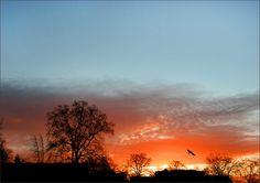 Morgenrot im Februar - Jahreszeiten - Galerie - Community