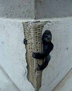 10+ Random Acts Of Genius Vandalism (New Pics) | Bored Panda
