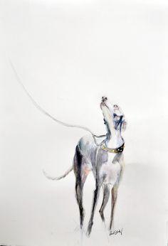 ORIGINAL Adoration Italian Greyhound