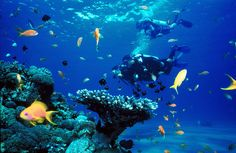 Why Palawan is CNTraveler's Top 1 Island