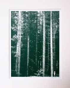 Lost In The Woods But I Like It That Way By Lene Bladbjerg | artrepublic