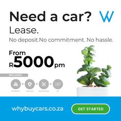 Apply for a 3 or 6 month car lease now. Peace Of Mind, Get Started, Cars For Sale, Motors, How To Apply, Cars For Sell, Motorbikes