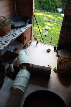 Attention bunny shed people - Rabbits United Forum Diy Guinea Pig Cage, Guinea Pig Hutch, Guinea Pig House, Bunny Hutch, Guinea Pigs, Bunny Sheds, Rabbit Shed, Pet Rabbit, Bunny Cages