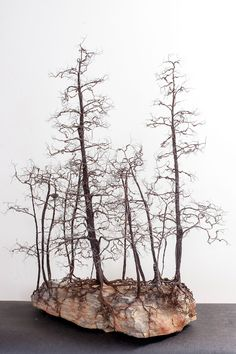 Kevin Champeny Copper Winter Grove x x deep 62 lbs Grove of miniature bonsai style trees constructed from feet of 14 gauge copper coated steel, feet of 32 gauge bare. DELICATE & WIRE THIN - amazing copper wire miniature tree sculptures by Kevin Champeny. Wire Tree Sculpture, Sculpture Art, Wire Sculptures, Abstract Sculpture, Bronze Sculpture, Metal Tree Wall Art, Metal Art, Sculptures Sur Fil, Tree Wall Decor