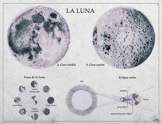 grafika moon, luna, and la luna Rukia Bleach, Yennefer Of Vengerberg, Under Your Spell, Retro Poster, Desenho Tattoo, Moon Goddess, Luna Lovegood, Moon Child, The Last Airbender