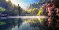 Nature spring sunrise mist lake trees reflection forest landscape hill water colorful 4 Sizes Home Decor Canvas Poster Print Cool Pictures, Cool Photos, Beautiful Pictures, Water Reflections, Forest Landscape, Spring Nature, Outdoor Photography, Photography Sky, Waterfalls Photography