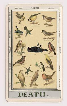 'The Mystique Ephemera Tarot' - Oatmontien . Illustration The Tarot Reader https://www.etsy.com/it/shop/CartomancyMagazin