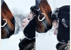 Winter Horse Love ♥