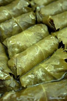 Niños envueltos, an argentinian dish of rolled chard or cabbage leaves stuffed with minced meat, rice, red peper and onions, simmered in tomato sauce. Lebanese Recipes, Turkish Recipes, Vegan Recipes, Cooking Recipes, Grape Leaves Recipe, Traditional Christmas Food, Empanadas, Arabian Food, Middle Eastern Recipes