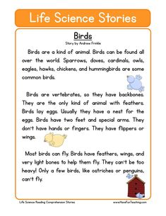 How to teach Reading Comprehension This Birds Life Science Reading Comprehension Worksheet will help your students build their reading comprehension skills while reading a non-fiction text about birds. First Grade Reading Comprehension, Reading Comprehension Worksheets, Reading Passages, Comprehension Strategies, Reading Response, Have Fun Teaching, Teaching Reading, Phonics Reading, English Reading