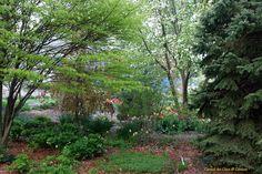 Conrad Art Glass & Gardens: 1/14/12 Garden change