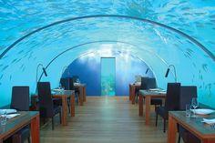 イター・アンダーシー・レストラン(Ithaa Undersea Restaurant)