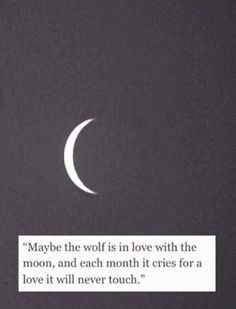 Maybe the wolf is in love with the moon...