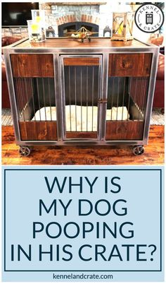 Why is your dog pooping inside his crate. A dog's natural instinct to keep its den clean and domestic dogs consider crates as a den. Read here for common reasons for the dog to poop in a crate are here stated below. Dog Kennel Outside, Diy Dog Kennel, Dog Kennels, Dog Pooping In House, Dog Furniture, Training Your Dog, Crate Training, Potty Training, Training Tips