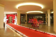 Circus Gala - Red Carpet