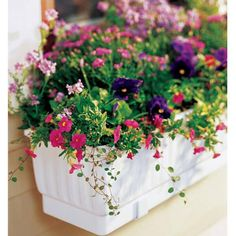 Self-Watering Window Box. This self-watering window b. Self-Watering Wi Window Box Flowers, Flower Boxes, Growing Flowers, Planting Flowers, Pot Jardin, Window Planter Boxes, Planter Ideas, Garden Windows, Balcony Garden