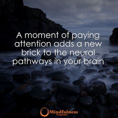 A moment of paying attention adds a new brick to the neural pathways in your brain.