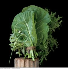 2015 Simply Raw calendar | Amber Lotus Publishing — featuring vegetable portraits by Lynn Karlin and recipes by Matthew Kenney.