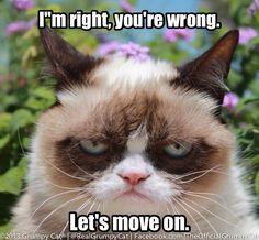 Community Post: 14 Hilarious Grumpy Cat Memes That Will Make You Smile Grumpy Cat Quotes, Gato Grumpy, Funny Grumpy Cat Memes, Funny Cats, Funny Animals, Cute Animals, Grumpy Kitty, Cats Humor, Funny Memes