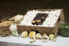S'mores Station Jamie Hollander Gourmet Catering & Events Photography www.erinkeough.com/