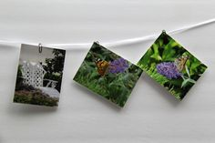 Garden Boxed Notecards with envelopes - Gift set - Hostess Gift - 8 cards #gifts #giftset