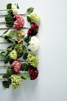 41 Trendy Ideas for wedding flowers peonies hydrangea green Deco Floral, Arte Floral, Fresh Flowers, Beautiful Flowers, Spring Flowers, Happy Flowers, Faux Flowers, Silk Flowers, Colorful Flowers