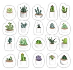 'Succulents' Sticker by katherineblower Pattern design of various succulents and indoor plants in a minimalist style, this piece has been very popular with the stickers which are perfect for Cactus Stickers, Phone Stickers, Journal Stickers, Diy Stickers, Scrapbook Stickers, Planner Stickers, Free Printable Stickers, Doodles, Tumblr Stickers