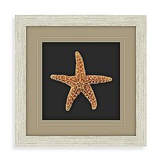 Bring a bit of the beach into your home with this shadowbox wall art. With a real starfish, wall art is accented perfectly with a driftwood finish frame. Measures 14 x 14.