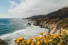 California by SamAlive Flower Phone Wallpaper, Macbook Wallpaper, Wallpaper Pc, Computer Wallpaper, Glitter Wallpaper, Screen Wallpaper, Facebook Cover Photos Flowers, Landscape Photography, Nature Photography