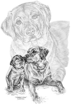 Mother Labrador Dog And Puppy Print By Kelli Swan dog breed, art prints, puppi print, labrador dogs
