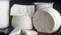 O Queijo Minas padrão é um queijo de simples elaboração e de muita versatilidade na culinária, sendo o principal ingrediente para o famoso pão de queijo. Este queijo é um dos queijos mais populares no Brasil e extensamente fabricado em Minas Gerais, com destaque para algumas regiões como Sêrro, Serra de Araxá, Canastra. No sul do país recebe uma denominação bem particular que é de Queijo de Colônia (queijo fabricado na colônia).