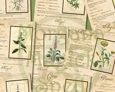 MAGICK HERBS, 10 PAGES Digital Downloads, Herbal Book of Shadows Apothecary Grimoire, Scrapbook, Spells, Wiccan, Witchcraft, Spells