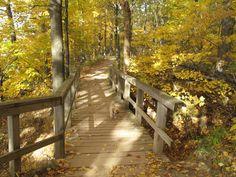 Dundas Ontario, Garden Bridge, Outdoor Structures