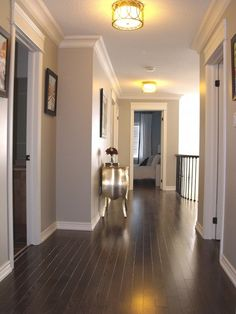 That grey paint with dark wood floors has me in love! Need this color for kitchen, living room with the dark wood floors. Estilo Craftsman, Dark Wood Floors, Dark Flooring, Dark Hardwood, Wood Flooring, Flooring Ideas, Hardwood Floor, Modern Flooring, Wood Walls