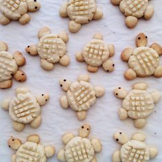 No cookie cutter needed for these peanut butter turtle cookies. Cute Snacks, Easy Snacks, Cute Food, Easy Sweets, Snacks Ideas, Yummy Snacks, Turtle Cookies, Turtle Cupcakes, Cupcake Recipes
