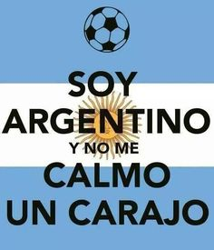LOL Translation I'm Argentine And I'll be Damned if I Calm Down.Rightfully so. International Soccer, Brazil World Cup, Funny Memes, Jokes, Funny Bunnies, Calm Down, Spanish Quotes, Lionel Messi, Cool Shirts