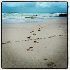 A picture of Tarkarli beach shared by our fan Shweta Narsaria